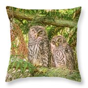 Sleeping Barred Owlets Throw Pillow
