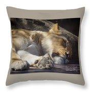 Sleeping Beauty,  Houston Zoo Throw Pillow