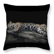 Sleeping Beauty Throw Pillow by M Montoya Alicea