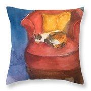 Sleeping Calico Throw Pillow