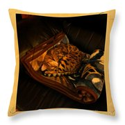 Sleeping Cat Digital Painting Throw Pillow