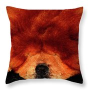 Sleeping Chow Chow Throw Pillow