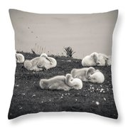 Sleeping Cygnets Throw Pillow