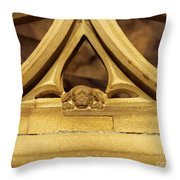 Sleeping Dog In Strasbourg Cathedral Throw Pillow