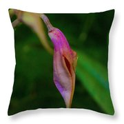 Sleeping Dragons Head Orchid Throw Pillow