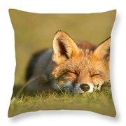 Sleeping Fox Kit Throw Pillow