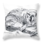 Sleeping Jago Throw Pillow by Brandy Woods