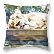 Sleeping Kittykat Throw Pillow