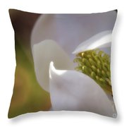 Sleeping Magnolia Throw Pillow