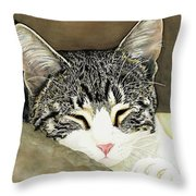 Sleeping Mia Throw Pillow