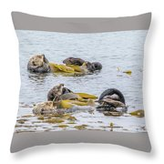 Sleeping Otters Throw Pillow