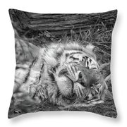 Sleeping Tiger Throw Pillow