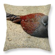 Sleeping Time Throw Pillow