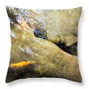 Sleeping Under The Water Throw Pillow