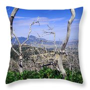 Sleeping Ute Mountain - From Mesa Verde National Park Throw Pillow