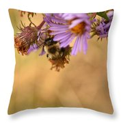 Sleepy Bee On New England Aster Vertical Throw Pillow