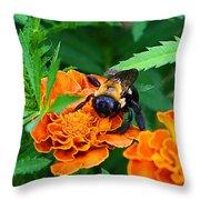 Sleepy Bumblebee Throw Pillow