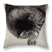Sleepy Creature Throw Pillow