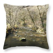 Sleepy Creek Throw Pillow