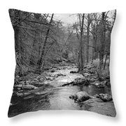 Sleepy Hollow Cemetary Throw Pillow