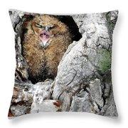 Sleepy Owlet Throw Pillow
