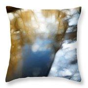 Sleepy River Throw Pillow