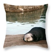 Sleepy Sea Otter Throw Pillow