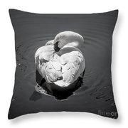 Sleepy Swan Throw Pillow