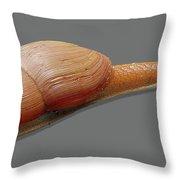 Slender Snail Throw Pillow