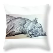 Slepping Lion Throw Pillow