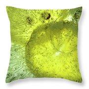Slices Of Lemon Throw Pillow