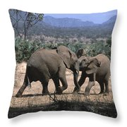 Slight Disagreement Throw Pillow