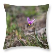 Slimpod Shooting Star Throw Pillow