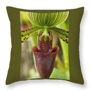Slipper Orchid Throw Pillow
