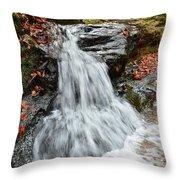 Slippery Rock Falls Fdr State Park Ga Throw Pillow