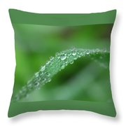 Slippery Slope Throw Pillow