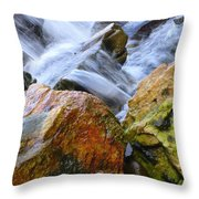 Slippery When Wet Throw Pillow