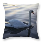 Sliting The Dream Throw Pillow