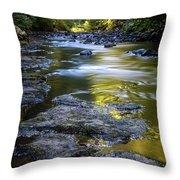 Sliver Creek Throw Pillow