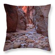 Slot Canyon Reflections Throw Pillow