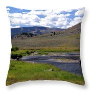 Slough Creek Angler Throw Pillow by Marty Koch