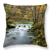 Slow Down At Alley Throw Pillow
