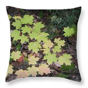Slow Fade Throw Pillow