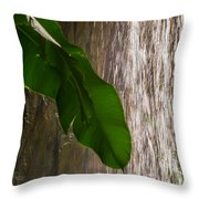 Slow Motion Tropical Waterfall Throw Pillow