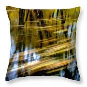 Slow Moving Stream - 2959 Throw Pillow