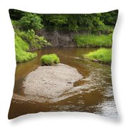 Slow River In Deep Forest Landscape Throw Pillow