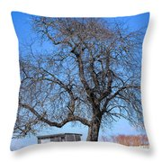 Slowly Coming To Life Throw Pillow