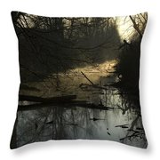 Slue Throw Pillow