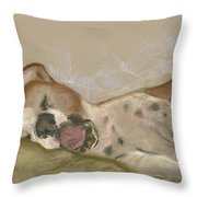 Slumbering Grace Throw Pillow