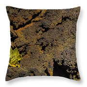 Small Aloe In Lava Flow Throw Pillow